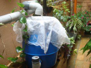 esővíz hasznosítása