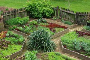 vidékies kert