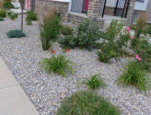 kavicsos kert kialakítása