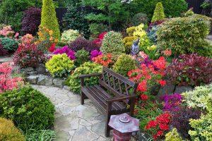 oázis a kertben