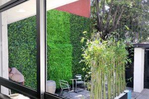 kerti térelválasztó fal növényből